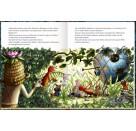 Coppenrath Verlag - Der wilde Räuber Donnerpups (Bd. 2) - Überfall aus dem All